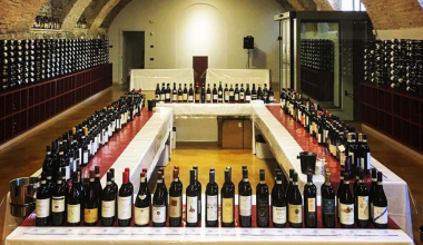 Enoteca Regionale del Barolo, from learning to the landscape