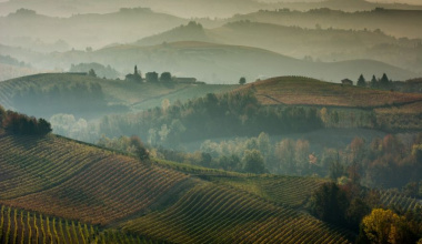 Langhe, the landscape of wine and the wine of the landscape