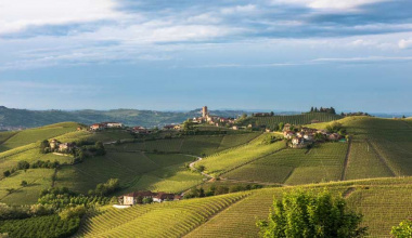 Enoteca del Barbaresco: « Promoting the expressions of an extraordinary DOCG »